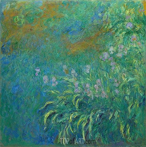 Monet | Irises, 1914