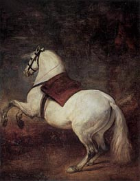 A White Horse, c.1634/35 by Velazquez | Painting Reproduction