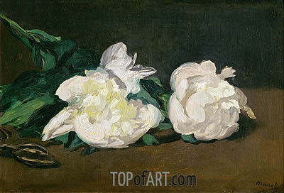 Branch of White Peonies and Secateurs, 1864 | Manet | Gemälde Reproduktion
