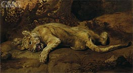 The Lioness | Frans Snyders | Painting Reproduction