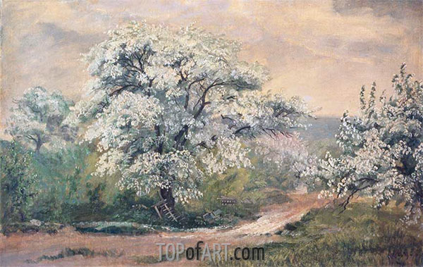 Frederic Edwin Church | Apple Blossoms at Olana, 1870