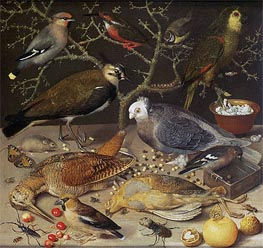 Still Life of Birds and Insects, 1637 by Georg Flegel | Painting Reproduction