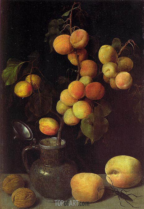 Apricot Branch, c.1630 | Georg Flegel | Painting Reproduction