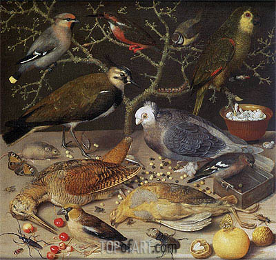 Georg Flegel | Still Life of Birds and Insects, 1637