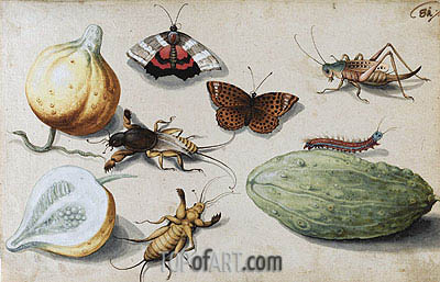 Butterfly, Beetle, Grasshopper and Caterpillar, undated | Georg Flegel | Painting Reproduction