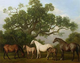Mares and Foals under an Oak Tree, 1773 by George Stubbs | Painting Reproduction
