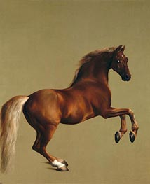 Whistlejacket, 1762 by George Stubbs | Painting Reproduction