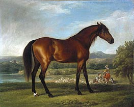 Hollyhock, c.1765 by George Stubbs | Painting Reproduction