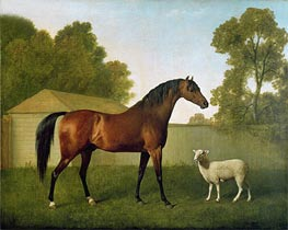 'Dungannon', the property of Colonel O'Kelly | George Stubbs | Painting Reproduction