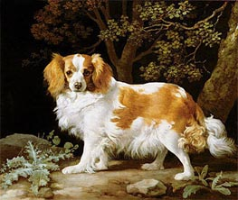 A Liver and White King Charles Spaniel in a Wooded Landscape | George Stubbs | outdated