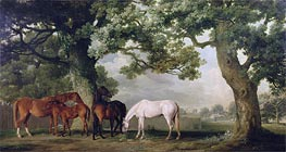 Mares and Foals Beneath Large Oak Trees, c.1764/68 by George Stubbs | Painting Reproduction