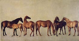 Mares and Foals without a Background, c.1762 by George Stubbs | Painting Reproduction