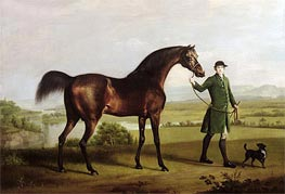A Horse Belonging to the Rt. Honourable Lord Grosvenor called 'Bandy' from His Crooked Leg, 1763 by George Stubbs | Painting Reproduction