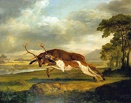 Hound Coursing a Stag, c.1762 by George Stubbs | Painting Reproduction