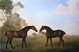 Two Hunters out at Grass, 1789 by George Stubbs | Painting Reproduction