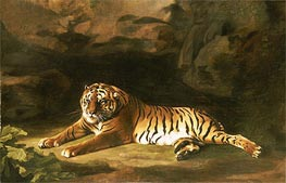 Portrait of the Royal Tiger, c.1770 by George Stubbs | Painting Reproduction