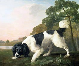 A Spaniel in a Landscape, 1771 by George Stubbs | Painting Reproduction