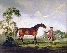 The Duke of Ancaster's Bay Stallion 'Spectator', Held by a Groom, c.1762/65 by George Stubbs | Painting Reproduction