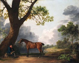 Der dritte Herzog von Dorset Hunter mit einem Bräutigam und ein Hund, 1768 von George Stubbs | Gemälde-Reproduktion