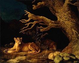 Löwe und eine Löwin, 1771 von George Stubbs | Gemälde-Reproduktion