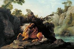 Pferd von einem Löwen gefressen, 1763 von George Stubbs | Gemälde-Reproduktion