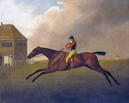 Baronet with Samuel Chifney up, 1791 by George Stubbs | Painting Reproduction