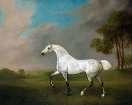 A Grey Horse, 1793 by George Stubbs | Painting Reproduction