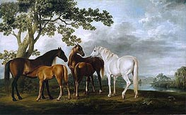 Mares and Foals in a River Landscape, c.1763/68 by George Stubbs | Painting Reproduction
