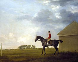 Gimcrack, with John Pratt up, on Newmarket Heath, c.1765 by George Stubbs | Painting Reproduction