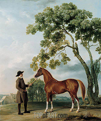 Lord Grosvenor's Arabian with a Groom, c.1765 | George Stubbs | Gemälde Reproduktion