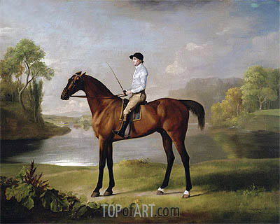 The Marquess of Rockingham's 'Scrub', 1762 | George Stubbs | Gemälde Reproduktion