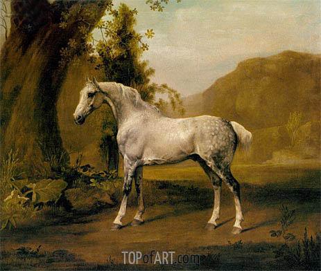 George Stubbs | Ein Grauer Hengst In einer Landschaft, c.1765