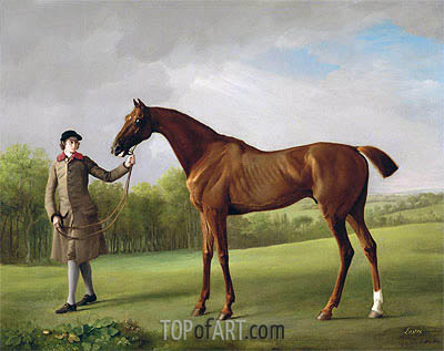 Lustre, held by a Groom, c.1760/62 | George Stubbs| Painting Reproduction