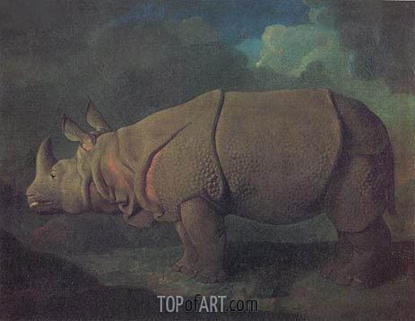 Rhinoceros, c.1790/91 | George Stubbs | Painting Reproduction