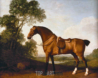 A Saddled Bay Hunter, 1786 | George Stubbs| Painting Reproduction