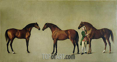 George Stubbs | 'Whistlejacket' and Two other Stallions with Simon Cobb, the Groom, 1762