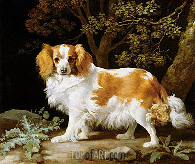 George Stubbs | A Liver and White King Charles Spaniel in a Wooded Landscape, 1776