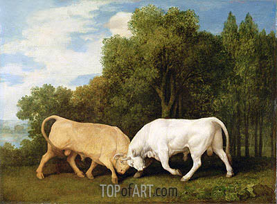 Bulls Fighting, 1786 | George Stubbs | Painting Reproduction