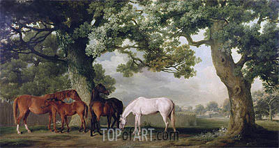 Mares and Foals Beneath Large Oak Trees, c.1764/68 | George Stubbs| Painting Reproduction