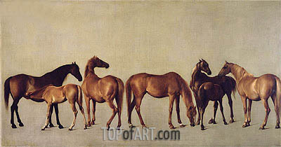 George Stubbs | Mares and Foals without a Background, c.1762