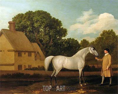 George Stubbs | 'Gimcrack', 1770