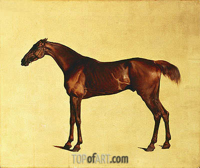 Rufus (Pangloss), c.1762/65 | George Stubbs | Painting Reproduction