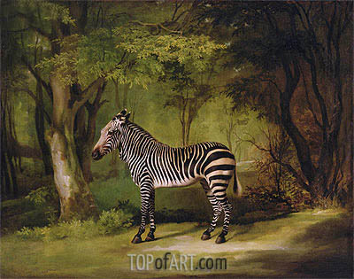 A Zebra, 1763 | George Stubbs | Painting Reproduction