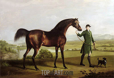 George Stubbs | A Horse Belonging to the Rt. Honourable Lord Grosvenor called 'Bandy' from His Crooked Leg, 1763