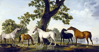 Five Brood Mares, undated | George Stubbs | Painting Reproduction