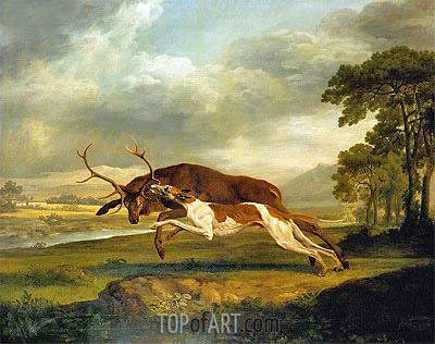 Hound Coursing a Stag, c.1762 | George Stubbs | Painting Reproduction