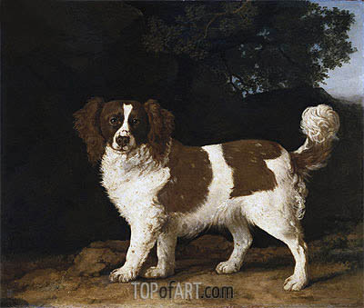 Fanny, the Favourite Spaniel of Mrs. Musters, Standing in a Wooded Landscape, 1777 | George Stubbs| Painting Reproduction