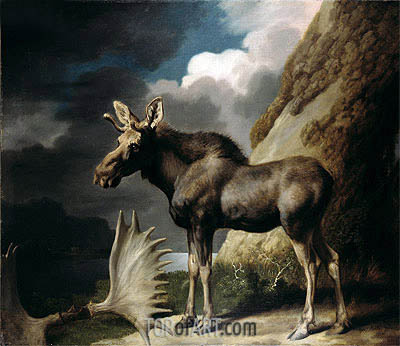 George Stubbs | Moose, 1770