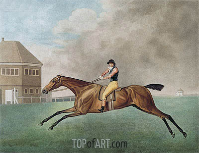 Baronet, 1794 | George Stubbs | Painting Reproduction