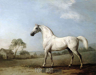 Mambrino, 1779 | George Stubbs| Painting Reproduction